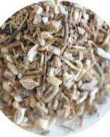 エキナセア根 <br> Organic Echinacea Angustifolia <br> EU オーガニック <br> 毎年ピュアハーブNo.1人気