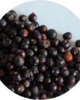 ジュニパベリー <br> Organic Juniper Berry <br> EU オーガニック