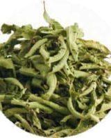レモンバーベナ <br> Organic Lemon Verbena <br> バイオダイナミック有機