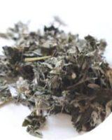ヨモギ茶 <br> Japanese Mugwort <br> 国産