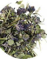 アニスヒソップ <br> Organic Anise hyssop <br> EUオーガニック