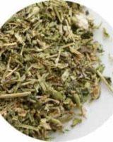 チックウィード <br> Organic Chickweed <br> EUオーガニック