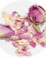 ダマスクローズ ピンク <br> Organic Rose Damascena Pink <br> EU オーガニック
