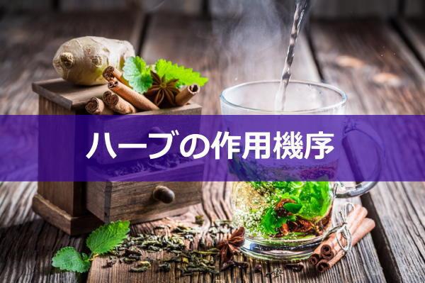 herb-sayoukijyo