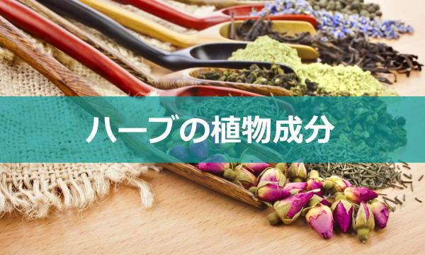 herb-seibun